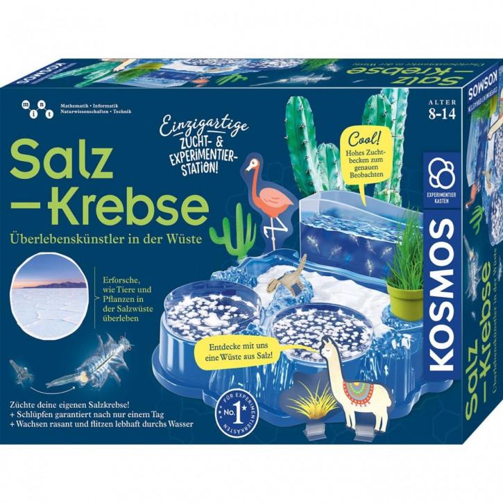Salzkrebse Experimentierkasten