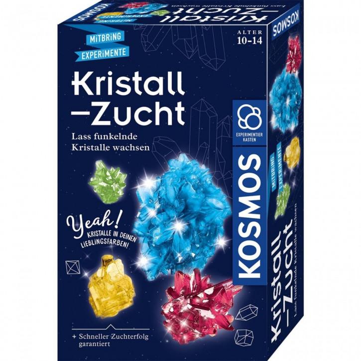 Kristall-Zucht Experimentierkasten