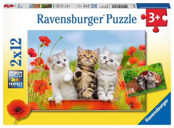 Puzzle 2 X 12 Teile Katzen auf Entdeckungsreise