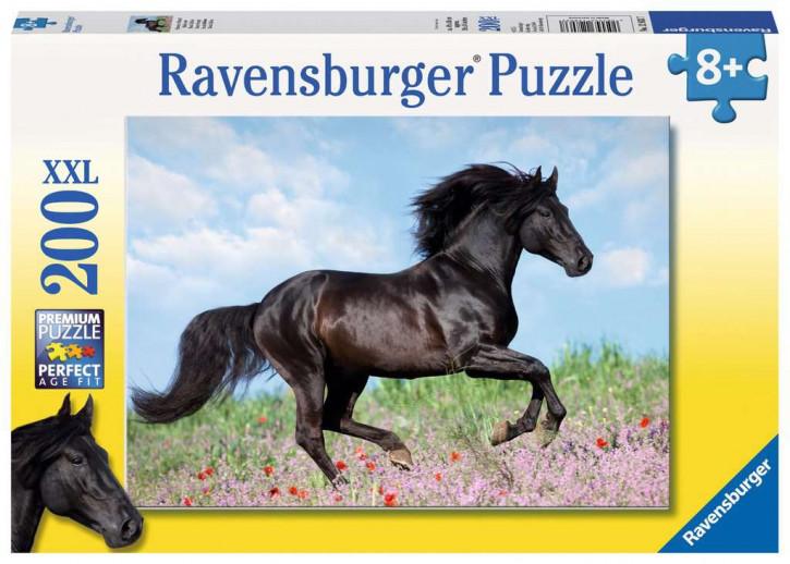 Puzzle 200 Teile XXL Schwarzer Hengst