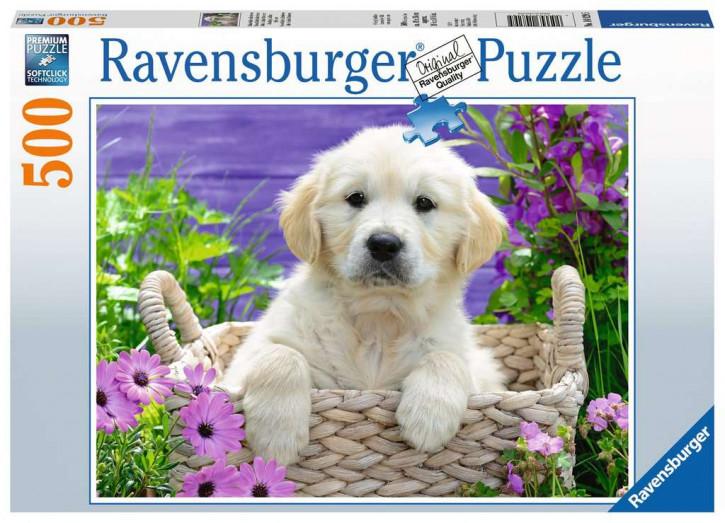 Puzzle 500 Teile Süßer Golden Retriever