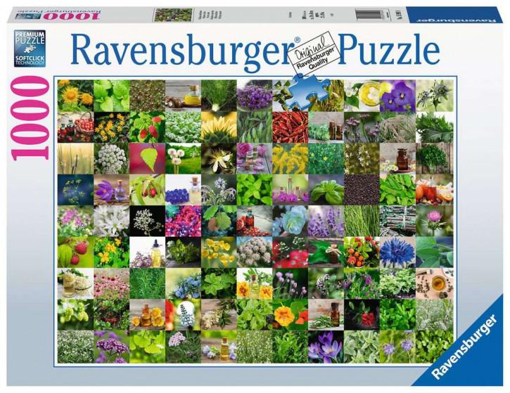 Puzzle 1000 Teile 99 Kräuter und Gewürze