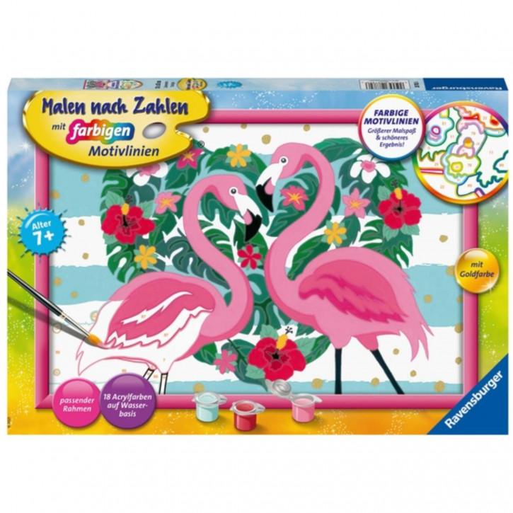 Malen nach Zahlen 7+ - Liebenswerte Flamingos