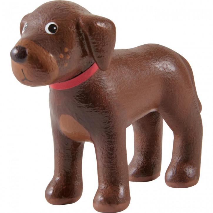 Little Friends – Hund Dusty