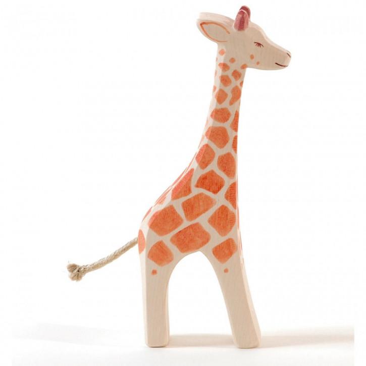Giraffe groß stehend